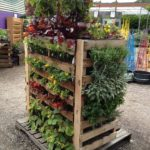 Pallets and Vertical Gardens