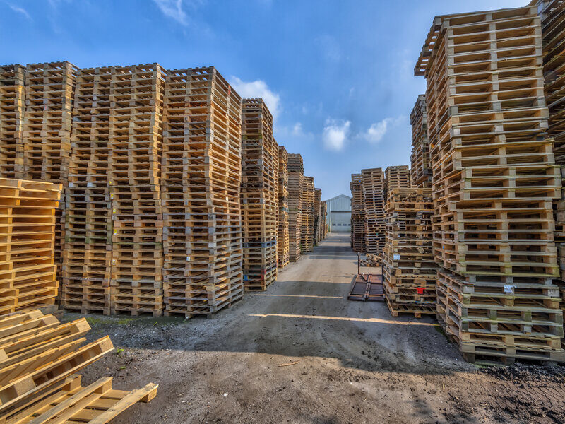 5 Things to Consider When Switching to Recycled Pallets